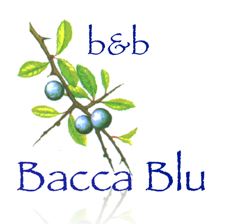 B&B Bacca Blu